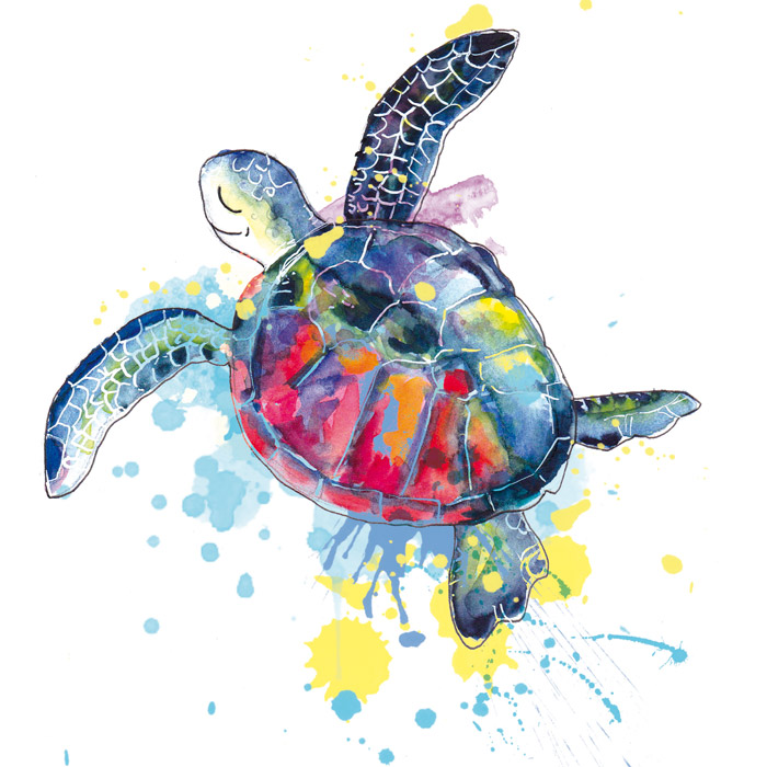 illustration-tortue-de-mer