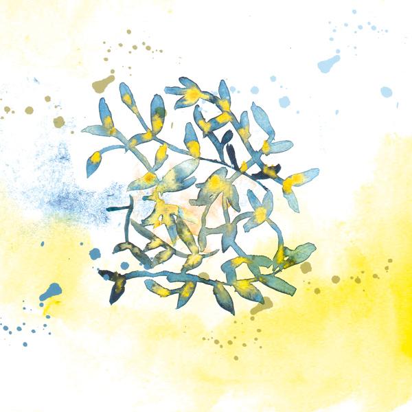 motif-vegetal