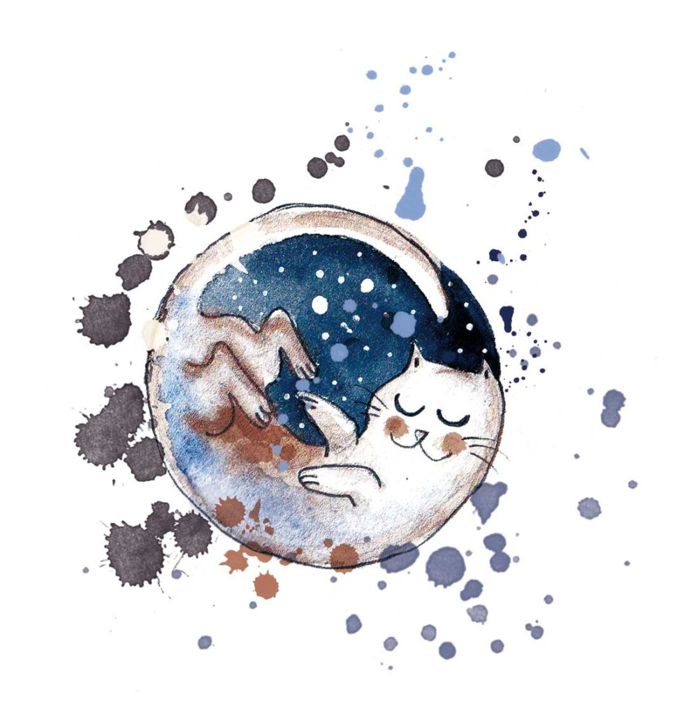 chat lune illustration encre et aquarelle